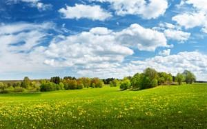 estonia-nature